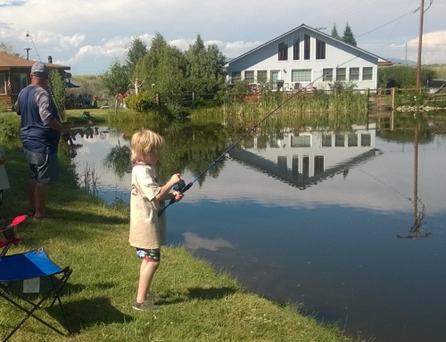 Fishing for Investments